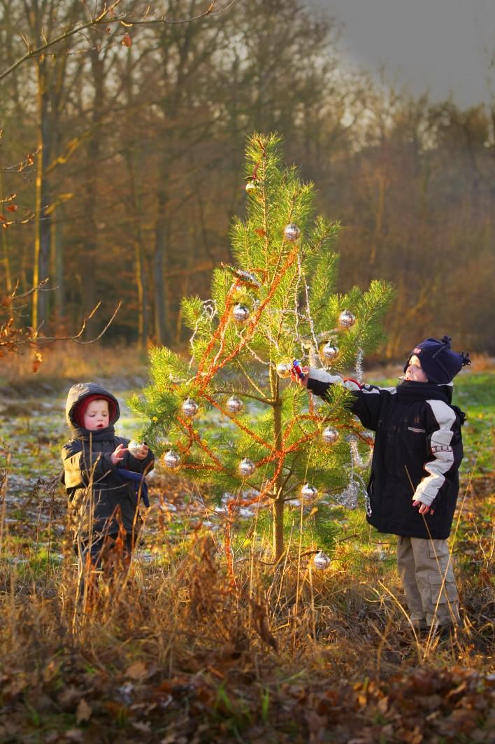 Karel knipt kerststerren van Klamer-kaarten