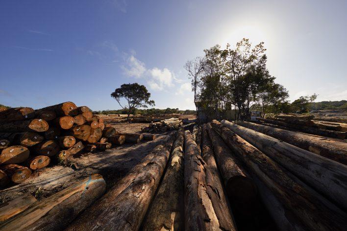 Slow down in Suriname © Jaco Klamer www.klamer-staal.nl