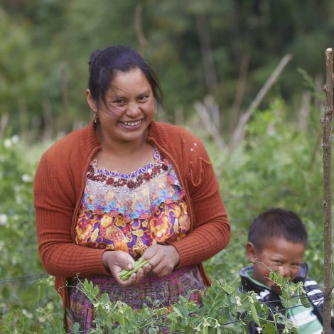 Grandiosa Guatemala